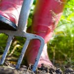 rp_10-Tips-to-Spring-Gardening-on-the-Cheap.jpg